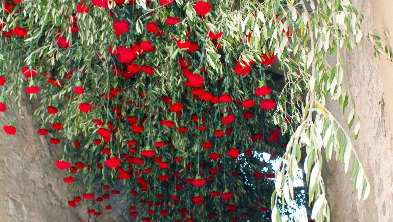 slow flowers italy 2018 allestimenti floreali monticchiello toscana